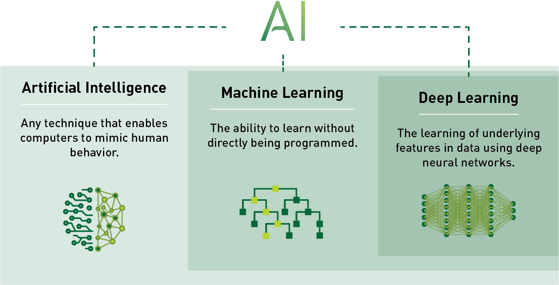 Rolling in the Deep Learning: Basic Concepts for Everyone
